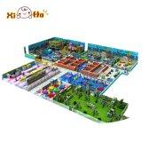 Terrain de jeux d'intérieur multifonctionnel du grand espace
