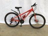 熱い販売山によってはMTB058が自転車に乗る
