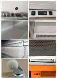 Refrigerador abierto de la lechería/de la bebida/del vehículo/de aire de la visualización de Multideck de las frutas