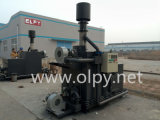 Due Chamber Incinerator per All Kinds di Waste