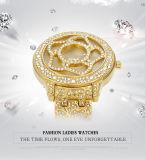 숙녀 스테인리스 석영 건전지 방수 일본 운동 호화스러운 손목 시계 유명 상표 Belbi를 위한 꽃 형식 다이아몬드 석영 시계