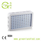 Plants&#160를 위한 온실 Square Indoor 800W LED Grow Light;