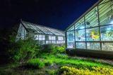 duidelijke/Lage Ijzer Aangemaakte Glas van 4/5/6mm het ultra met Gaten/Opgepoetste Randen voor Groen Huis