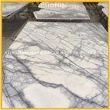 Het Witte Marmer van het Bouwmateriaal/Steen, de Witte Marmeren Tegel van de Vloer, Marmeren Plakken