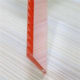 Materiale 100% del Virgin del Bayer strato della cavità del policarbonato da 4/6/8/10/12 di millimetro