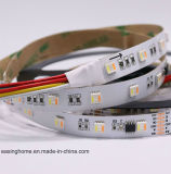 5050SMD LED Band 5 in 1 LED-Streifen