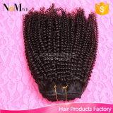 Afro Kinky Curly Clip Extensiones de Cabello Humano virgen de Malasia cabello afro-americano en Extensiones de Clip 12-30 Curly Clip Ins