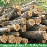 Rectifieuse 2017 en bois de burineur de tambour de forêt de qualité de large échelle