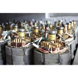6000 watt di Portable Power Gasoline Generator con CE, Soncap Certificate (WH7500-B)
