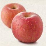 FUJI Apple mit guter Qualität