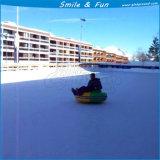 Nuevo deporte sobre hielo, Paragolpes de hielo con el coche CE para la venta