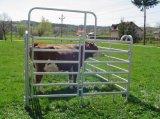 販売のための6つの棒鋼鉄牛パネルか熱い浸された電流を通された牛Livetsockのパネルまたは牛農機具の牛Panel/1.8X2.1m家畜の牛パネル電流を通される