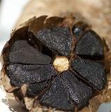 حارّ عمليّة بيع أسود ثوم من اختمار