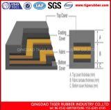 Конвейерная Ep Multi-Ply высокотемпературная упорная резиновый