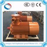 Prix usine triphasés du moteur électrique Ybx3/engine