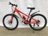 Горячие продажи горных велосипедов MTB058