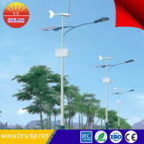 Meilleure performance 8m 60W Solar Wind Street Light