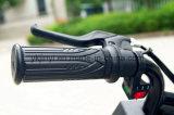 Elektrisches Motorrad der Qualitäts-100W für Verkauf