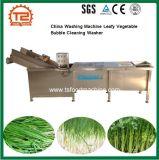 세륨 중국 세탁기 잎줄기 채소 거품 청소 세탁기