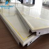 La Chine Hot Sale 300*300mm en aluminium Clip Mold-Proof au plafond