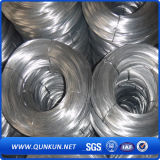 Hot Sale Electro Galvanized Wire 0.3mm