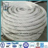 Ring/Bandspule gepackt, Seil (3/4 Strang) verankernd