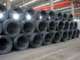 Filo di acciaio laminato a caldo di Q235B Rod