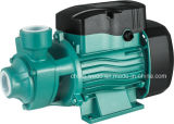 pompa elettrica dell'acqua di superficie 0.37kw/0.55kw/0.75kw per acque pulite (QB60/QB70/QB80)