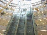 Baixo vidro isolado moderado E (JINBO)