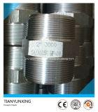 A105n schmiedete männliche Schrauben-verlegten Hexagon-Stahlnippel