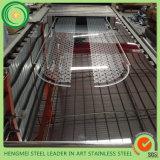 Lamiera sottile decorativa di vendita calda dell'acciaio inossidabile 304 per la decorazione interna