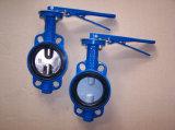 API/ANSI/DIN/JIS pneumatischer Stellzylinder-Drosselventil