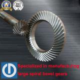 Zerkleinerungsmaschine-Welle mit Qualitäts-Spirale-Kegelradgetrieben