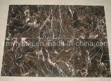 Mattonelle di marmo scure Polished di Emperador per il pavimento e la parete
