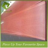De gecombineerde Decoratieve Tegels van het Plafond van het Schot van de Kleur van het Aluminium Houten met Perforatuion