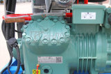 Lebensmittelklasseneis-Maschine des gefäß-5000kg/24hours für Tageszeitung Using