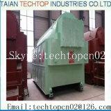 Systèmes de chauffage de chaudière de charbon de série de Dzl Taishan