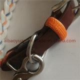 Tejido de cuerdas de nylon de color doble correa de perro collar y correa de perro