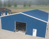 Gruppo di lavoro chiaro/magazzino/fabbrica della struttura d'acciaio