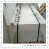 Granito / Mármore / Quartzo Branco Limestone Moca Crema Wall Tile