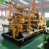 중국은 발전을%s Biogas 발전기를 주문을 받아서 만들었다