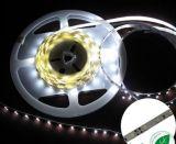 Tira no impermeable de 60PCS 3528 LED (60W-3528-12V)