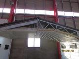 Het Landbouwbedrijf van /Poultry House&Poultry van het Huis van de Kip van de Structuur van het staal