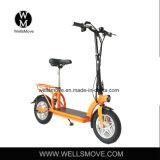 Wellsmoveの新しいデザインシート25km/Hが付いている携帯用Ecoの手段のEスクーター