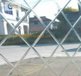 6mm Gesneden Spiegel, de Spiegel van de Kunst, die Spiegel verwerken