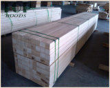 LVL de faisceau de peuplier/pin/bois dur utilisé pour les meubles/construction/emballage/échafaudage