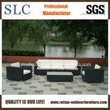 Synthetische Weidenmöbel/im Freienmöbel (SC-B6018-F) eingestellt/Möbel