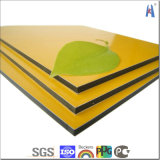 4mm PVDF Coating Bendable Plastic Core ASP