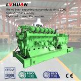 Schlüsselfertige Projekt-Lebendmasse-Kraftwerk-Gas-Energien-elektrischer Generator
