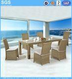 Piscina half round móveis de vime Vime mesa de jantar Set